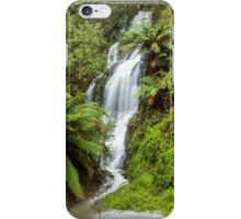 Dempster Falls East iPhone Case/Skin