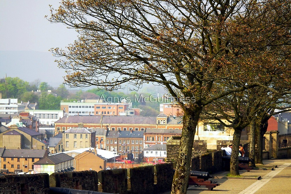 The Walls of Derry by Agnes McGuinness