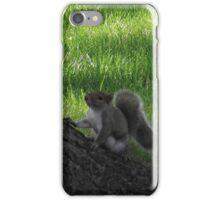 Frisky Squirrel iPhone Case/Skin