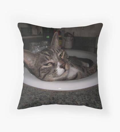 Grumpy Cat Throw Pillow
