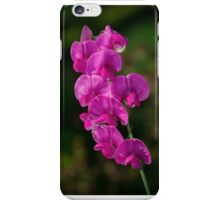 Sweet Pea Flower iPhone Case/Skin