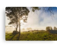 A Misty Morning in Westerway #2 Canvas Print