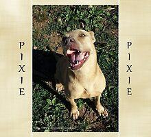Pixie (2) by Lydia Marano