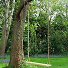 The Swing by Kezzarama