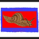 Banner AGC Mollusks Feature by aprilann