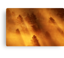 5.7.2014: When Light Is Born III Canvas Print