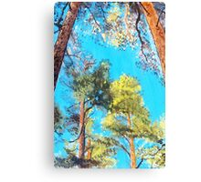 Looking up: Pine Forest Glory landscape painting Canvas Print