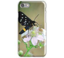 Black Beauty iPhone Case/Skin