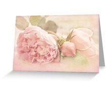 A Little Softness Greeting Card
