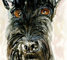 Priness Pickles The Scottie Dog by archyscottie