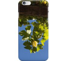 Harvest in the Sky - a Vertical View iPhone Case/Skin