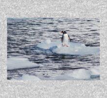 Gentoo penguins (Pygoscelis papua) on Danco Island  Baby Tee