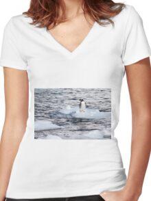 Gentoo penguins (Pygoscelis papua) on Danco Island  Women's Fitted V-Neck T-Shirt