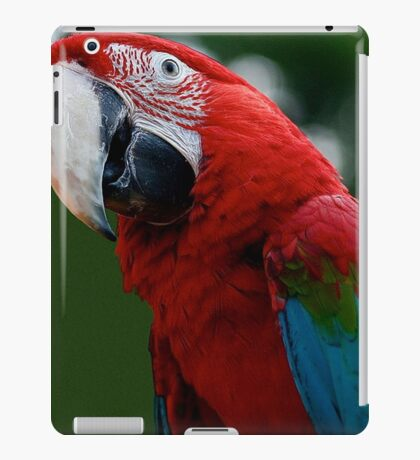Close-Up Of A Green-Winged Macaw iPad Case/Skin