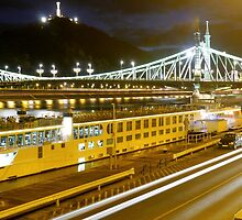 Liberty Bridge by WillBov