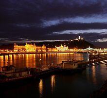 The Danube by WillBov