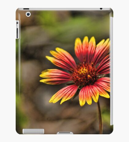 Paint Brush iPad Case/Skin