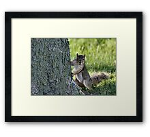 You wanna come up for some Nutella? Framed Print