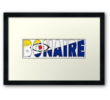 Bonaire Framed Print