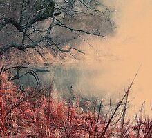 Fall Rusting Away by Eileen McVey