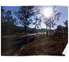 Mornings by the Road Poster