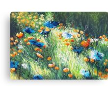 Irish summer Canvas Print