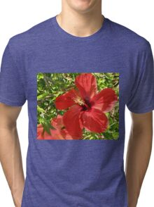 Red Hot Hibiscus Tri-blend T-Shirt