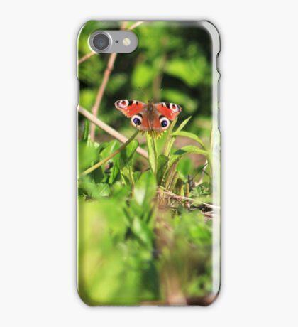 Peacock butterfly on dandelion iPhone Case/Skin