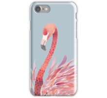Dear Flamingo iPhone Case/Skin