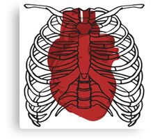 Heart in the cage Canvas Print