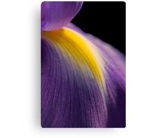 Petal of the Iris Canvas Print