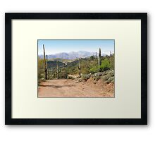 Down the Road I Go Framed Print