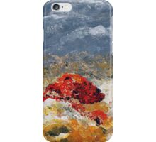 Sky Octopus iPhone Case/Skin