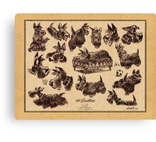 15 scotties Canvas Print