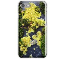 moss I iPhone Case/Skin