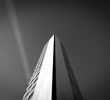 Alpha Tower Birmingham 2 by RossJukesPhoto