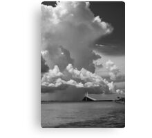 The  Black and white collection Canvas Print