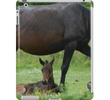 Mother and Foal iPad Case/Skin
