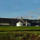 Mighty Riceland Foods by WildestArt