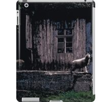 Cabin // Comic Style iPad Case/Skin