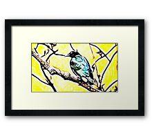 Song bird Framed Print