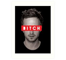 Jesse Pinkman - Bitch. Art Print
