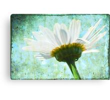 Mom's first daisy Canvas Print