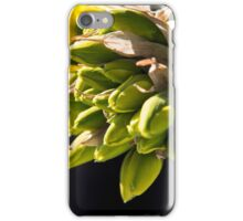 Daffodil Buds iPhone Case/Skin
