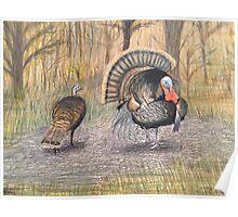 Turkeys in Autumn  Poster