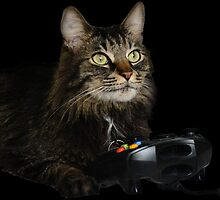 gamer cat by thoqqua