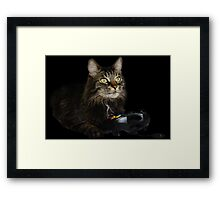 gamer cat Framed Print