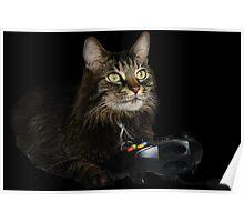 gamer cat Poster