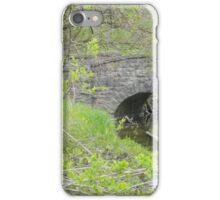 Bridge Over (Un)Troubled Waters iPhone Case/Skin