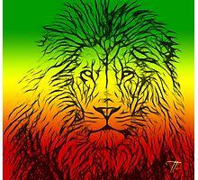 Rasta Lion numero tres Photographic Print